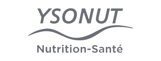 Logo Ysonut